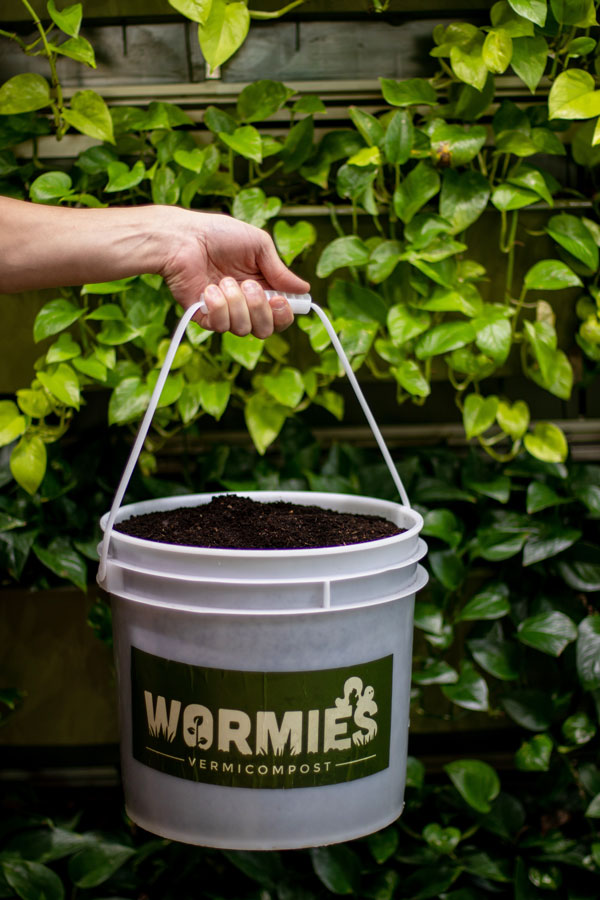Buy Vermicompost
