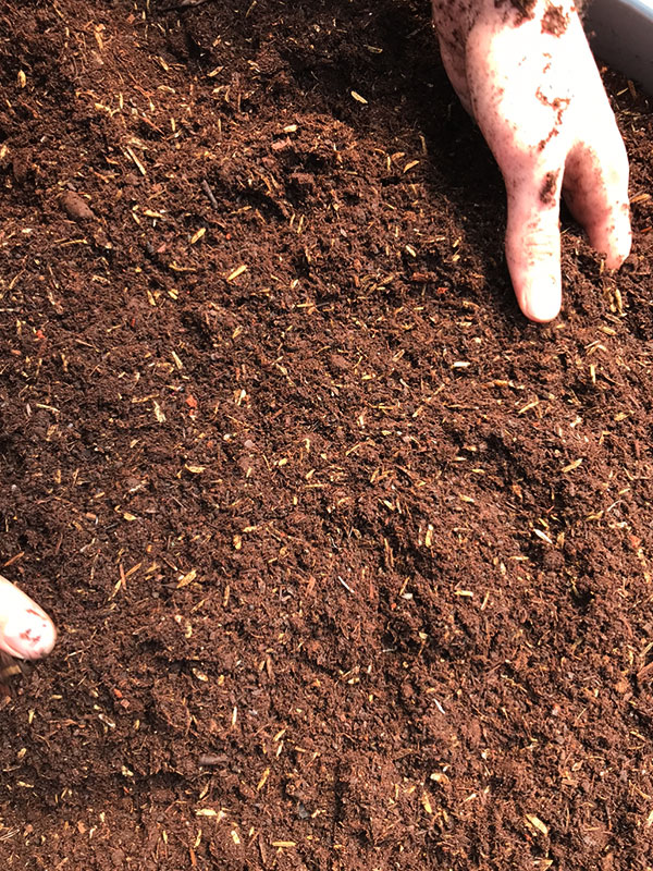 high quality soil for cannabis