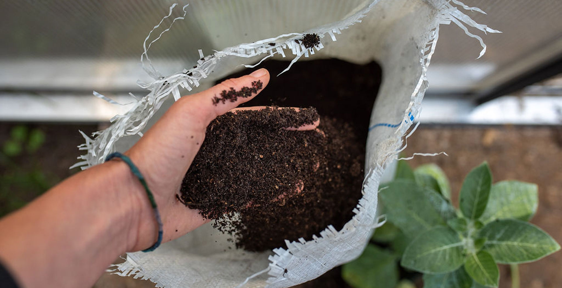 Fresh Worm Castings Vermicompost in West Michigan